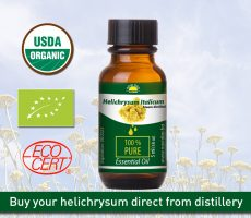 HELICHRYSUM OIL BOTTLE NOVI DAN 5ml