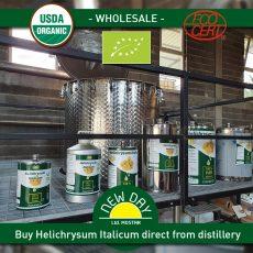 Buy Helichrysum organic wholesale